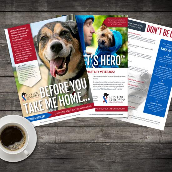 Nonprofit flyer design